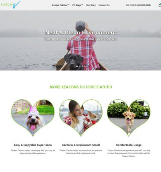 Web Design & Theme Install